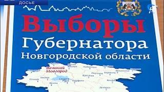 В области началась кампания по выборам главы региона