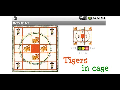 Video of Tigers in cage
