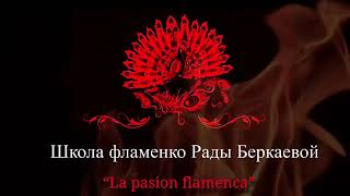 Страсть фламенко - танцуем дома!