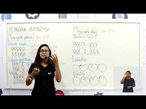 Aula 12 | Membrana Plasmática - Parte 03 de 03 - Exercícios Resolvidos - Biologia