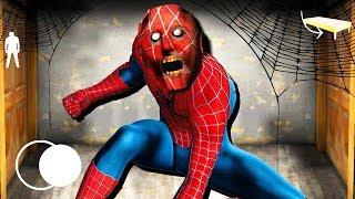 GRANNY È DIVENTATA SPIDER-MAN!