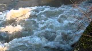 preview picture of video 'Innerste Hochwasser - Staumauer Sarstedt'