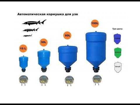 Автоматическая кормушка для кормления рыб в УЗВ