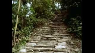 La Ciudad Perdida The Lost City  From The Heart Of The World  The Elder Brothers Warning