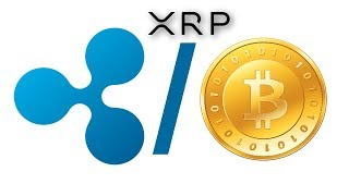 The Next Ripple XRP Bitcoin Bullrun Will Happen Faster Than We Think