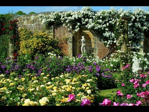 75 Most Beautiful Rose Gardens In The