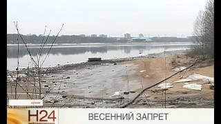 Запрет по рыбной ловле в ярославской области
