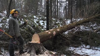 Building Off Grid Log Cabin - Ep 3 / Expect the Unexpected