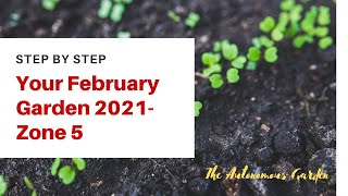 What to plant in mid February 2021 - Zone 5 New Hampshire - Garden with me series ep. 2.