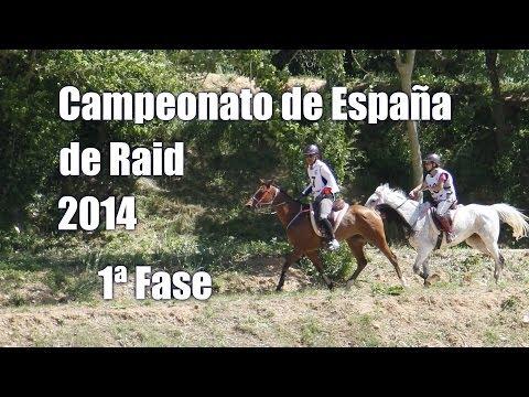 Campeonato de España de raid 2014 en Báscara: 1ª fase | Endurance Spanish Championship