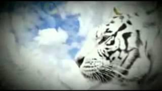 Yayan Jatnika - Sancang