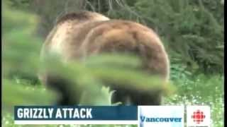 Mother Grizzly Bears Charge on Photographer