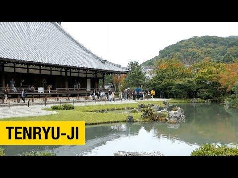 A Tour of Tenryu-ji Temple in Arashiyama