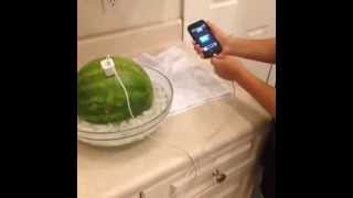 How to charge a phone with a watermelon! | Vine