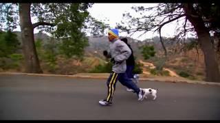 Training of Great Boxers (Тренировка Великих Боксеров)