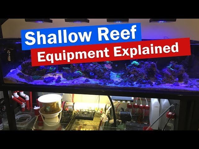 Shallow Reef Tank Sump and Equipment Explained - Echotech, Neptune, Jebao, DIY Reactor, Controllers
