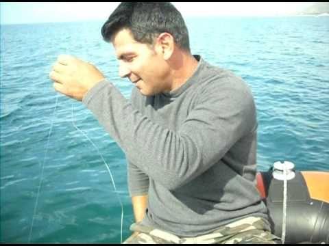 La caccia pescando in cattura di una carpa dargento