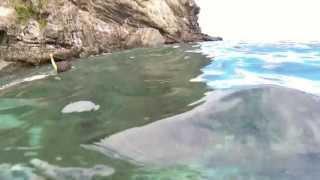 preview picture of video 'Fiji 2013 Malolo Island at Lomani Resort'