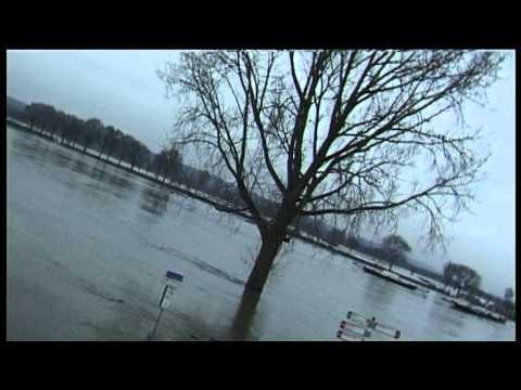 Hoogwater van de Maas in Cuijk - 11 januari 2011