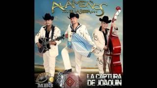 Los Alameños De La Sierra - 02 El Corrido De Hernan (Álbum 2014)