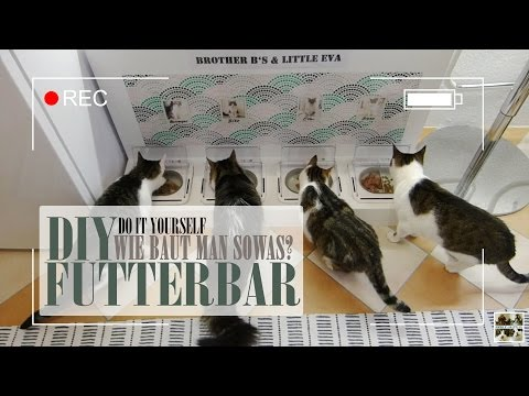 Themendienstag | DIY Futterbar | Brother B's and little Eva