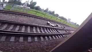 High Speed Trainsurfing 250 Kmh In Russia  Зацепинг на Сапсане МСК СПБ с 4 плановыми остановками