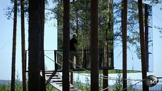 How to Build an Invisible Tree House | World's Strangest