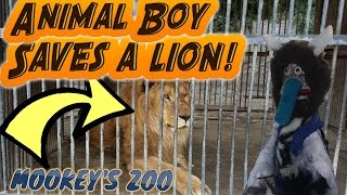 Animal Boy Saves a Lion! || Animal Boy Adventures Episode 3