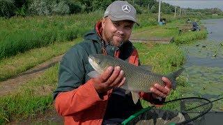 Стрелецкий ручей рыбалка михайловская слобода