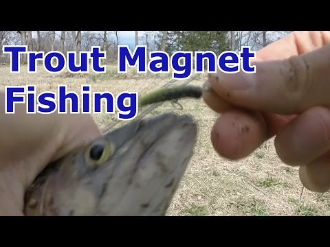 Trout Magnet Lure Fishing – Setup, Catches, and How to