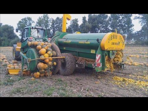 Удивительные современные мега машины и сельское хозяйство: Удобрение полей тыквой и кабачками
