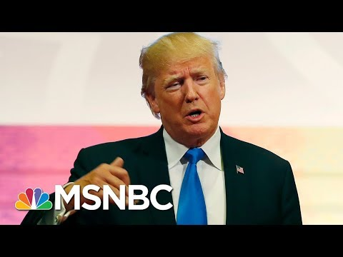 Mika On President Donald Trump: That Tweet Said So Much About His Character | Morning Joe | MSNBC