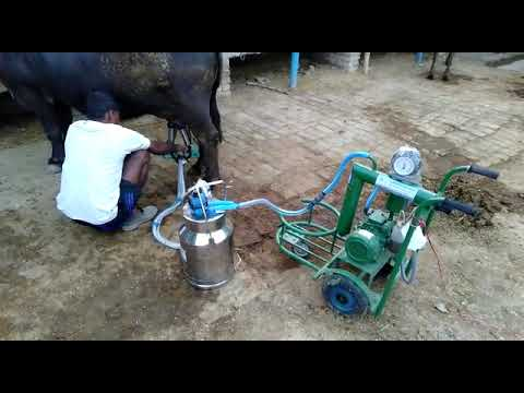 One Bucket Trolley Milking Machine