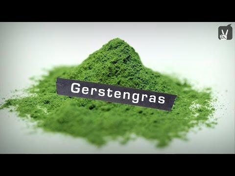 Gerstengras – Welche Wirkung hat Gerstengras?