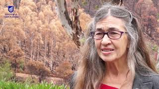 Newswise:Video Embedded rising-from-the-ashes-volunteers-and-good-science-will-be-vital-to-bush-recovery-after-catastrophic-fires