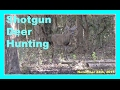 Shotgun Deer Hunting - November 24th, 2015