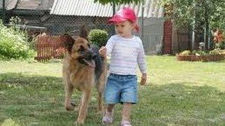 Уникално сладки Бебе и Куче!!! Вижте!!!