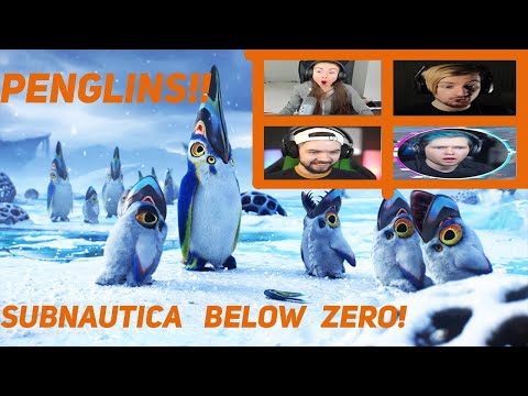Gamers React To The Pengwings!! - Subnautica Below Zero