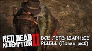 Поймать на удочку две рыбы