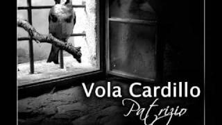 VOLA CARDILLO   PATRIZIO