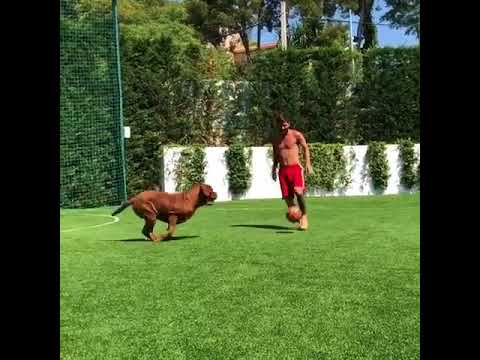 LIONEL MESSI PLAYING FOOTBALL WITH HIS DOG!