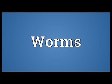 Kuting bilang isang tablet feed worm