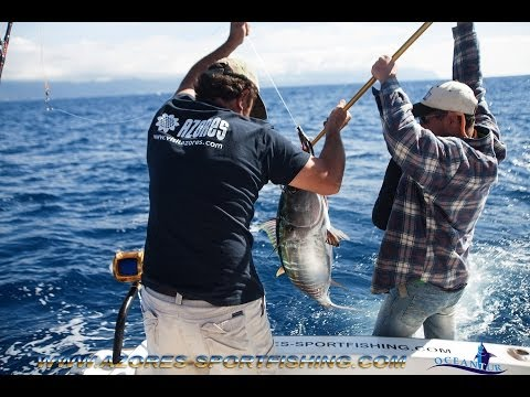 Sportfishing video of Oceantur from 14-06-2014 4 big eyes inside of Rabão vessel.