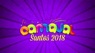 Público lota passarela do samba no desfile da elite das escolas de Santos