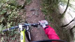 preview picture of video 'Rodltal (Gramastetten) with my Enduro MTB'