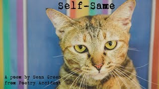 Self-Same