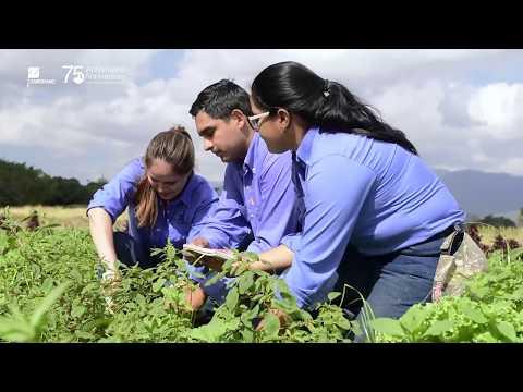EAP ZAMORANO: Conoce la carrera de Ciencia y Producción Agropecuaria