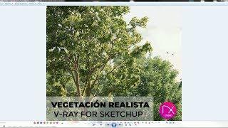 Laubwerk New plugin for SketchUp ✓ - Музыка для Машины