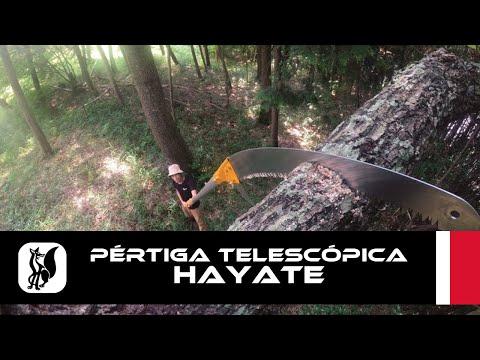 Pértiga telescópica de poda Silky HAYATE