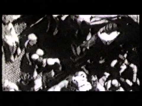 סיפורם המרגש של מעפילי האונייה אקסודוס